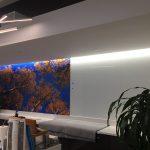 Wall Murals IMG 4730 150x150