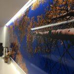 Wall Murals IMG 4744 150x150